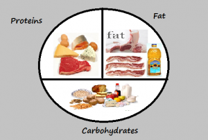 Calories-Carbs-Fat-Protein