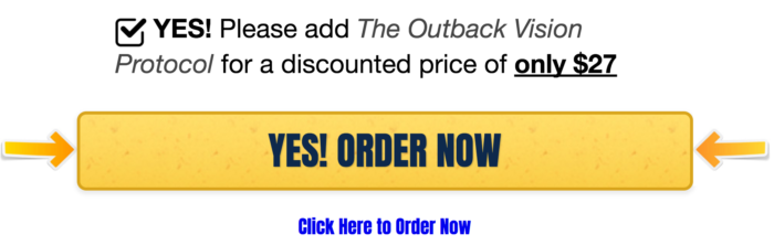 outback vision protocol reviews